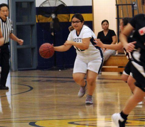 Girls Basketball Soars Through the Season